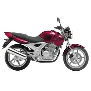 CBF 250 (5)