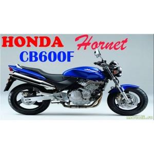 CB 600 F Hornet (9)